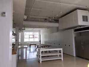 Professional Painter available!!! Cambridge Kitchener Area image 4