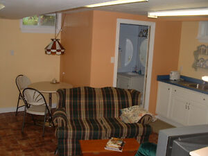 Clean Private 2-bedroom Apartment for Fleming Students Kawartha Lakes Peterborough Area image 2