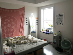 NOV-DEC SUBLET DOWNTOWN KINGSTON QUEEN'S UNIVERSITY STUDENTS