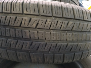 Summer Tires TIGERPAW 195/65R15
