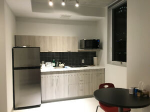 1 Bedroom Apartment for Lease, Close to McMaster University