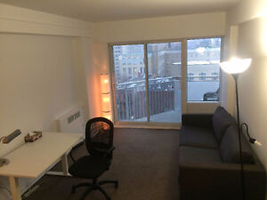 3440 Rue Durocher - Downtown/McGill Area - Furnished 2 Bedroom