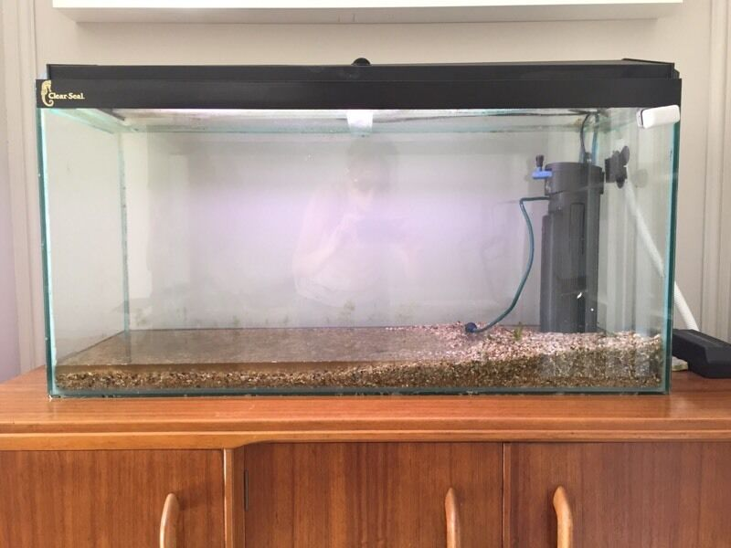 3ft clear seal fish tank water tight with fluval 4 for Second hand pond filters for sale