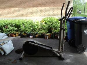 appareil elliptique Club Pro A107