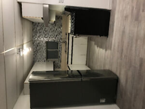 Large Updated 2 Bedroom Basement Suit For Rent