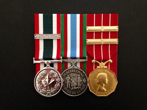 Trevor's Medal Mounting - Court Mounting, Research and Framing Belleville Belleville Area image 7