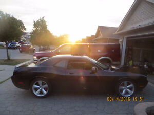 2009 Dodge Challenger SRT8 WITH ONLY 3000 KM LIKE BRAND NEW