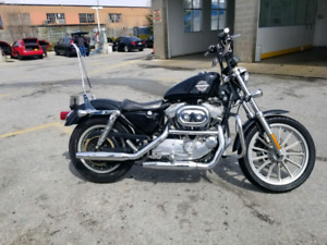 HARLEY SPORTSTER NEED GONE ASAP