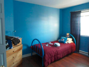 Big and Bright Full House for Rent in Cowan Heights St. John's Newfoundland image 6