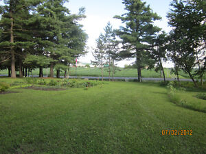building lot,Scenic view in Country