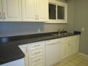 2 bedrooms available in 5 bedromm house on Richmond Row London Ontario image 2