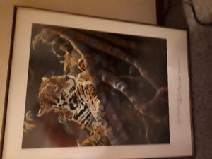 Jan Martin McGuire spirit of the Mayans tiger picture