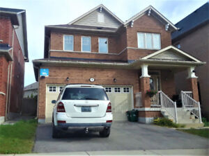 Detached 4-Bedroom House for Rent in Richmond Hill, November 1st