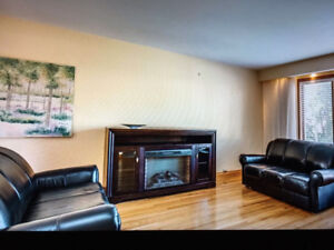 Moving Sale- Two 3 seats couches and one love seat ($1200)