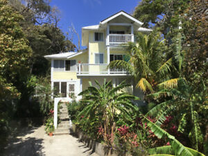 Spacious & Beautiful Studio apartment for rent roatan