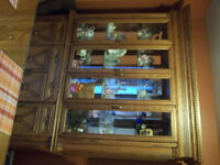 China Cabinet and Table with 6 Chairs and 2 leaves