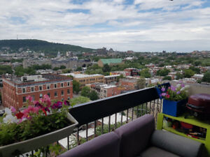 Holidays Rent - Montreal Plateau Downtown