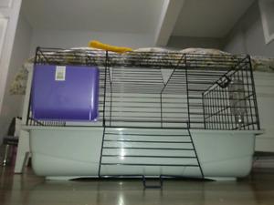 Cage cochons d'indes, lapins, etc