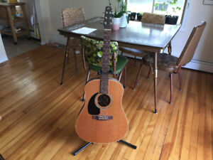 Seagull (Canadian-made) Left-handed Acoustic Electric Guitar