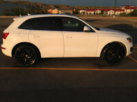 PRICE REDUCED!!!2010 Audi Q5 Premium Plus, Navigation, Pano Roof