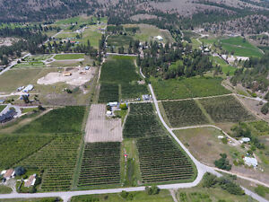 10 acre high density apple orchard (Summerland)