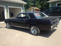 1967 Mustang Excellant Condition