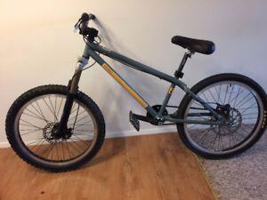 Norco two50 DJ bike