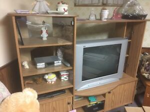 TV  and cabinet for sale  Kitchener / Waterloo Kitchener Area image 1