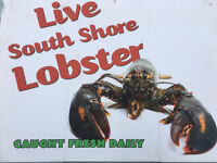 Fresh Live PEI  Southside Lobster