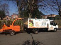 Tree Surgeon - Birmingham Tree Care