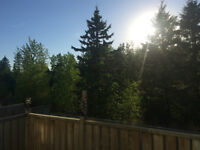 One bedroom in a quiet home, Wood Buffalo