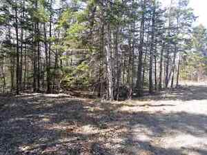 2 acres of land FS on Kingston peninsula, near GBay/WFLD ferry