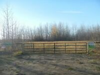 73 acre forested land - 25 min N. of Drayton Valley