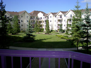 Beautiful 1Bdrm/1Bath Condo by 124 ST/Brewery District July 1st!