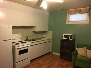 Cute Freshly Painted 1 Bedroom Basement Suite Private Entrance Moose Jaw Regina Area image 6