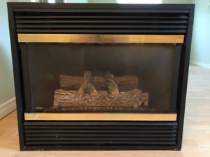 Very nice Gas Fireplace Insert