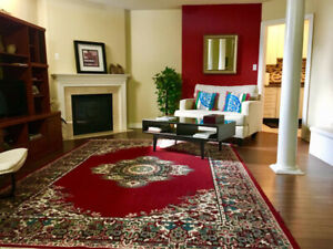 Furnished & Spacious low level Apt (Basement)ready to rent