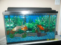 Fish Tank, Stand and accessories