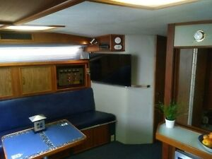 1987 SEA RAY 390 Express Cruiser Kitchener / Waterloo Kitchener Area image 4