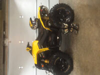 2015 Can-Am Renegade® 800R