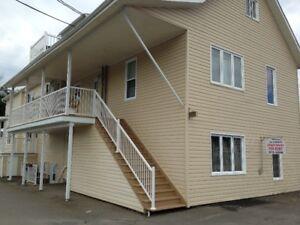 Nice 2 bedroom apt for rent