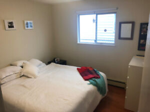 LARGE BRIGHT BEDROOM in Mount Pleasant available to rent!