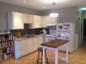 sublet 3 1/2 on the canal - Dec 16 - Jan 9 $Price Negotiable