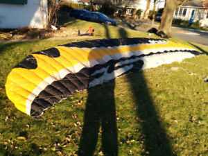 kite flysurfer Speed 1  10m