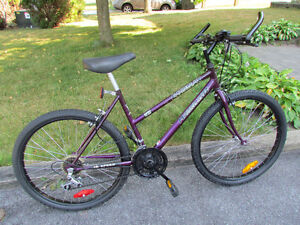 Adult Mountain Tour Bicycle For Sale
