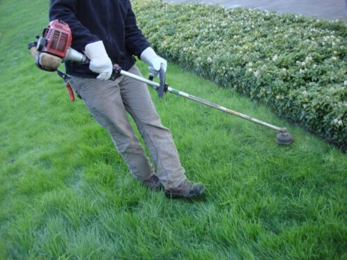 How to Buy a Used Strimmer on eBay