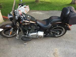 Harley 2013 110 anniversary
