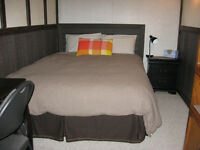 Furnished bedroom with private bath. Available Sept.1