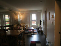 Central Downtown Fully Furnished Suite