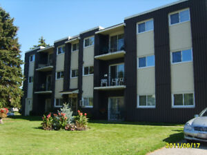 265 Chandler Drive, Kitchener, 2-Bed Apt (Westmount E./Ottawa S)
